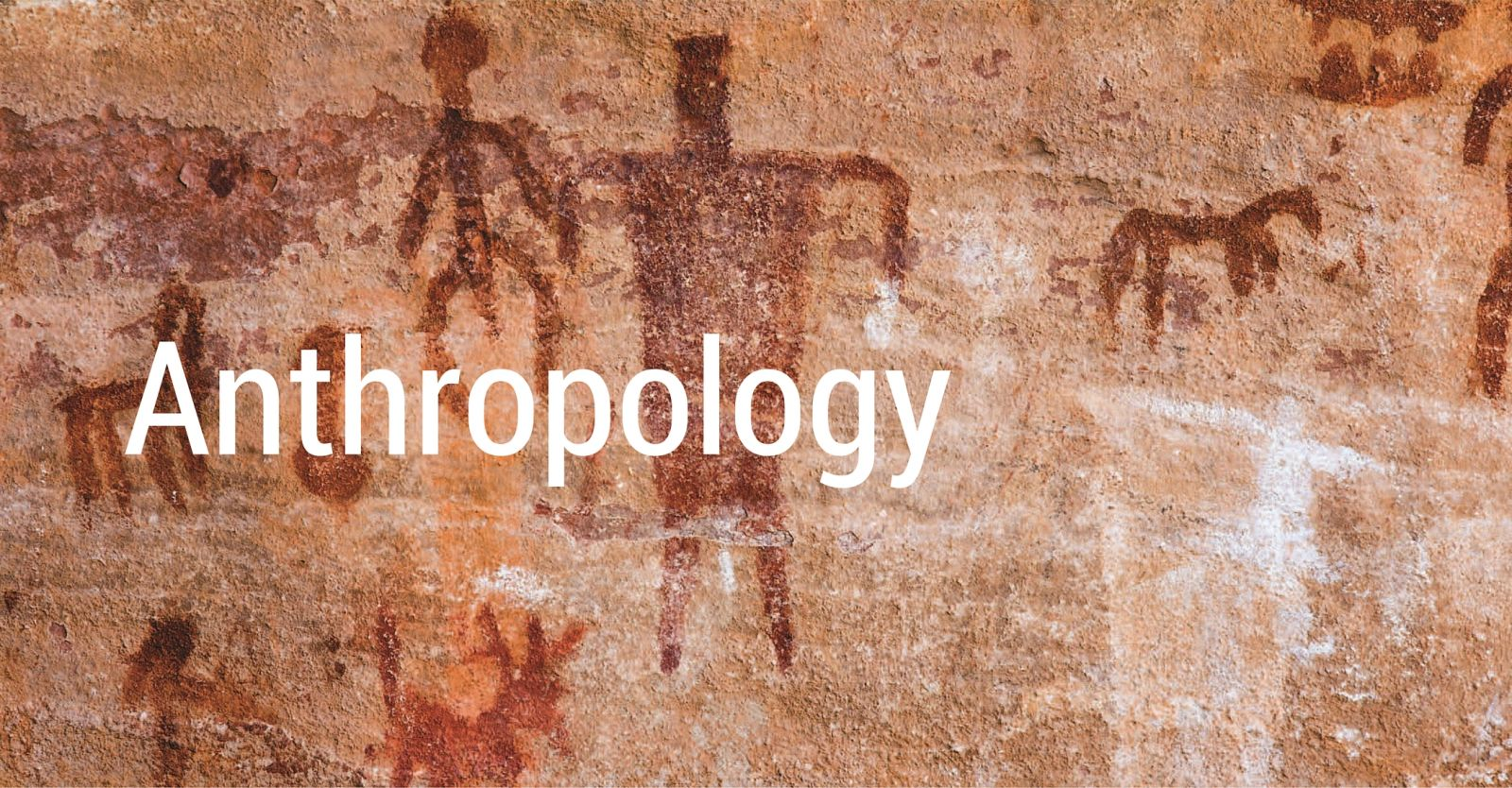 Jobs for Anthropology